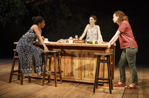 Review: Antlia Pneumatica at Playwrights Horizons