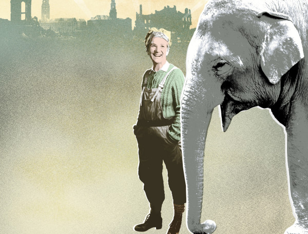 Review: An Elephant in the Garden at Bristol Old Vic Studio