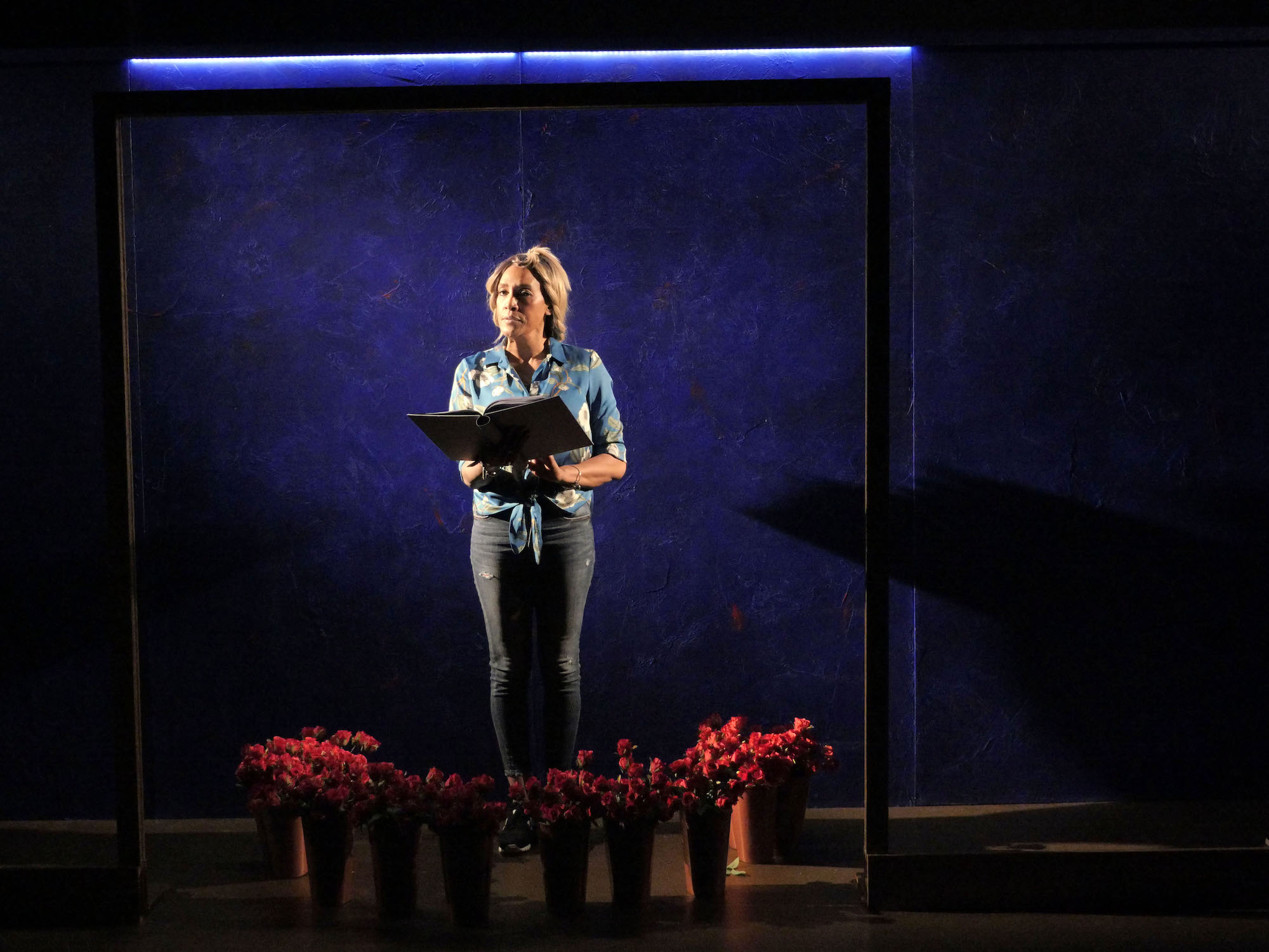 Cheryl Byron in don't forget the birds at Live Theatre, Newcastle. Photo: Keith Pattison.