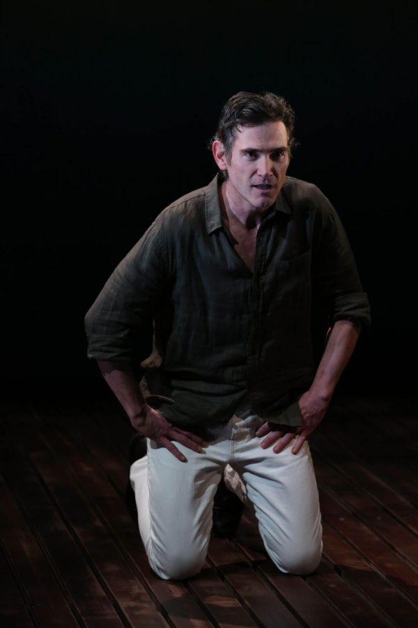 Review: Harry Clarke at Vineyard Theatre