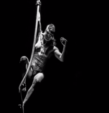 The Extraordinary Bodies of Aerial Circus
