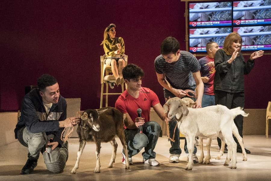 Goats, Royal Court. Photo: Johan Persson.