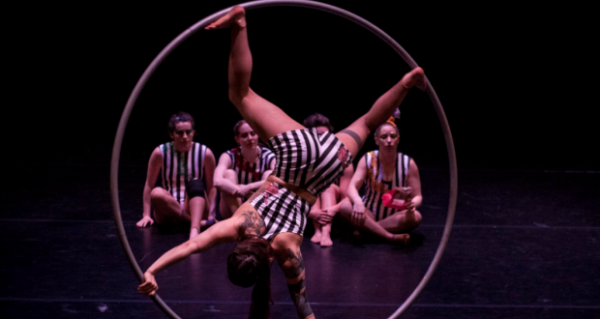 "Ellie Dubois: ""Circus is a device in the toolkit I use to make a show"""