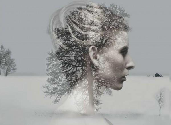 Ibsen's Lady Inger
